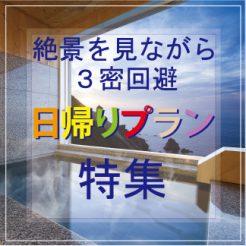 【3密回避&ワーケーションも】日帰りデイユースプラン特集!!